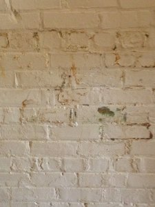 discoloration and peeling paint on a basement wall
